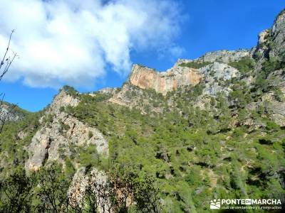 Cazorla - Río Borosa - Guadalquivir; viajes en enero valle de jerte cerezos en flor concierto de la